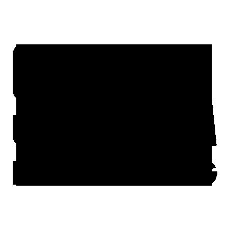 silva-logo-med-black